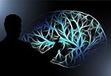 公告自即日起中國大陸製CCC8543.70.92.00-2「經皮神經電刺激器」停止輸入。