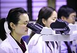 修正「中華民國輸入植物或植物產品檢疫規定」